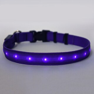 Yellow Dog Orion LED Collar - Solid Purple