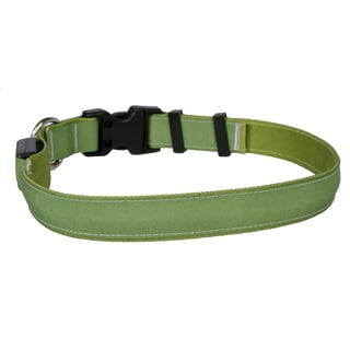 Yellow Dog Orion LED Collar - Solid Olive