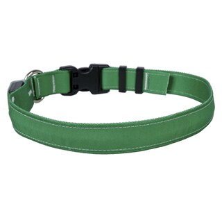 Yellow Dog Orion LED Collar - Solid Kelly Green