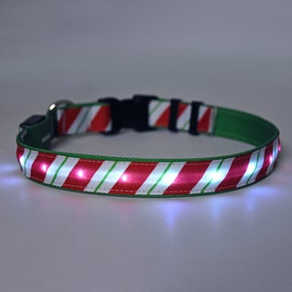 Yellow Dog Orion LED Collar - Peppermint Stick