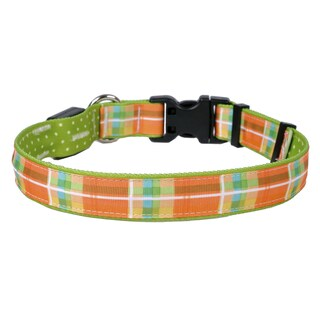 Yellow Dog Orion LED Collar - Madras Orange