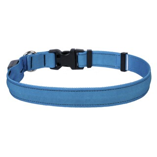 Yellow Dog Orion LED Collar - Solid Teal