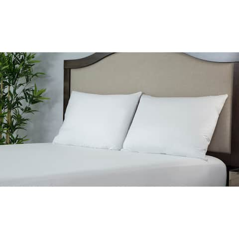 Protect-A-Bed ALLERZIP Smooth QUEEN Pillow Encasement 2 PACK - White
