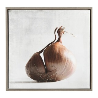 Sylvie Onion 24x24 Gray Framed Canvas Wall Art by F2 Images
