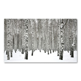 Benjamin Parker 'White Forest' 30x50-inch Giclee Wall Art