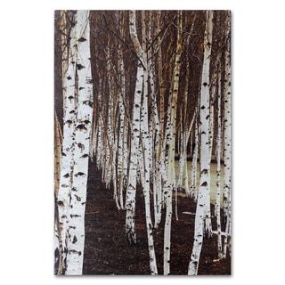 Benjamin Parker 'Birches' 24x36-inch Silver Giclee Wall Art