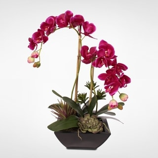 Green & Fuchsia Real Touch Orchid With Succulents in a Metal Planter