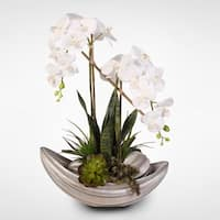 Real Touch  White Phalaenopsis Orchid & Succulents in a Resin Bowl