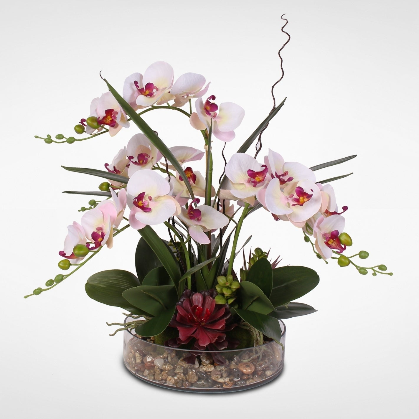 Silk Phalaenopsis Cream (Ivory) Pink Orchids in a Glass B...