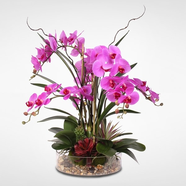 Real Touch Purple Phalaenopsis Orchid & Succulents in a Glass Pot