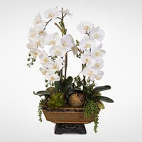 Real Touch Cream Orchids & Succulents in an Antiqued Gold Urn