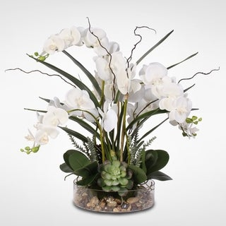 Link to Real Touch White Phalaenopsis Orchid & Succulents in a Glass Pot Similar Items in Decorative Accessories