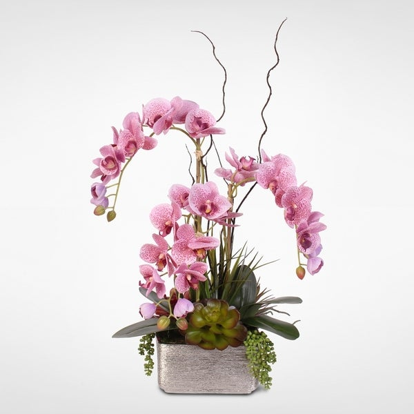 Real Touch Lavender Phalaenopsis Orchid & Succulents in Ceramic Pot