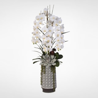 Real Touch White Phalaenopsis Orchid & Succulents in a Ceramic Vase
