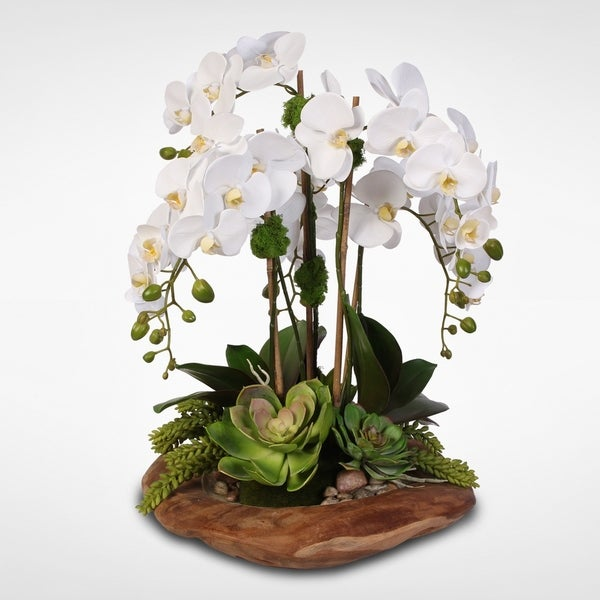 Real Touch 6-Stem Phalaenopsis Orchids & Succulents in Wood Bowl. Opens flyout.