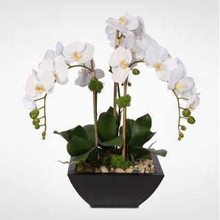 Real Touch White Phalaenopsis Orchid & Succulents in a Metal Pot