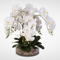 White Real Touch Phalaenopsis Orchid & Vanilla Grass in a Glass Bowl