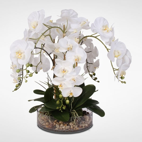 988a823db6 White Real Touch Phalaenopsis Orchid & Vanilla Grass in a Glass Bowl