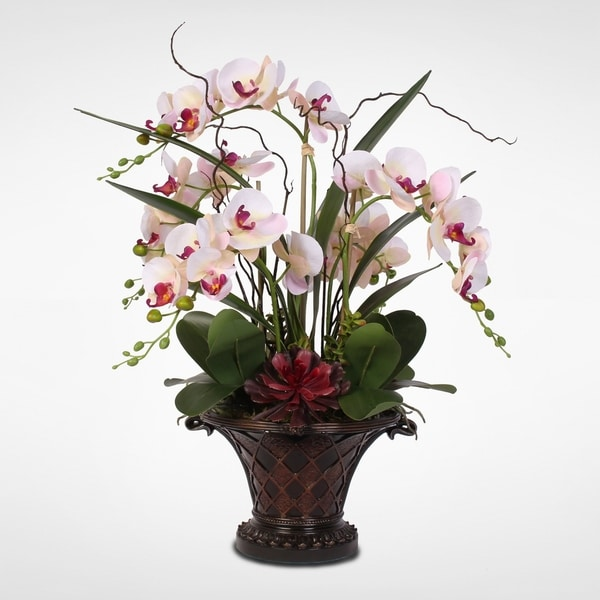 a2d44fbffa Pink/Cream Phalaenopsis Orchid with Artificial Succulents in Resin Bowl