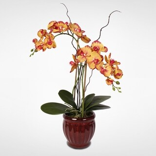 Yellow & Red Real Touch Phalaenopsis Orchid in a Glazed Ceramic Pot