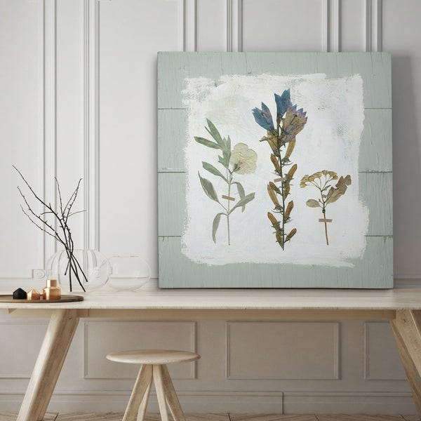Shop Pressed Flowers on Shiplap I - Premium Gallery Wrapped