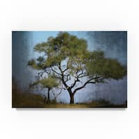 Beata Czyzowska Young 'Moody Tree' Canvas Art