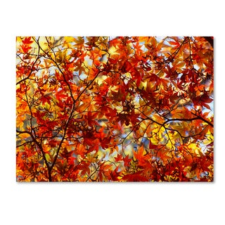 Robert Harding Picture Library 'Autumn Scene' Canvas Art