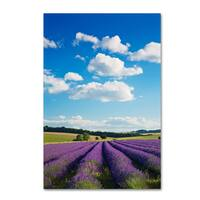 Robert Harding Picture Library 'Floral Scene' Canvas Art
