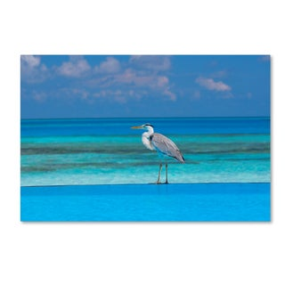 Robert Harding Picture Library 'Beachy 4' Canvas Art