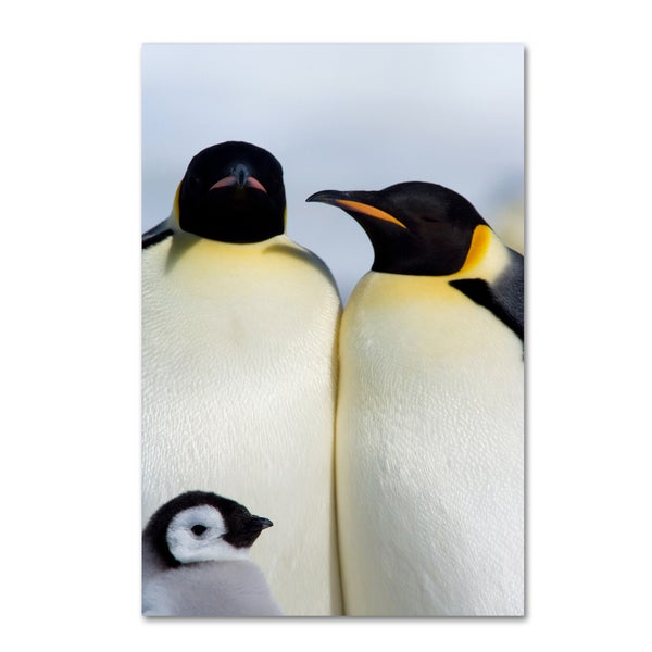 Robert Harding Picture Library 'Three Penguins' Canvas Art