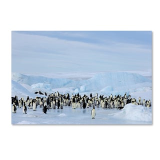 Robert Harding Picture Library 'Penguins.' Canvas Art