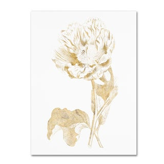 Wild Apple Portfolio 'Gilded Botanical VII' Canvas Art