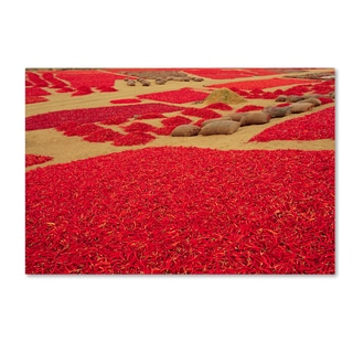 Robert Harding Picture Library 'Red Flowers 1' Canvas Art