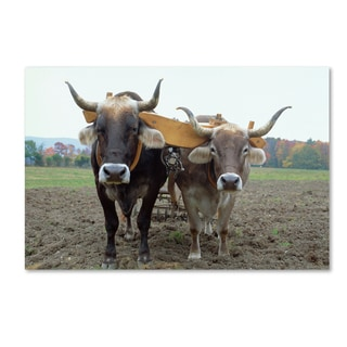 Robert Harding Picture Library 'Animals On Farm' Canvas Art