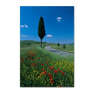 Robert Harding Picture Library 'Trees' Canvas Art