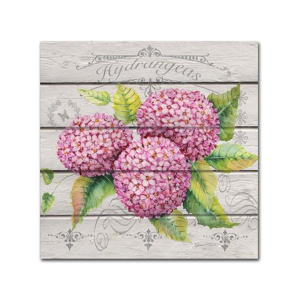 Jean Plout 'Pink Hydrangeas' Canvas Art
