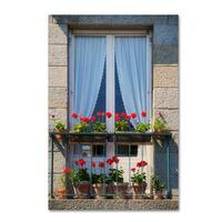 Cora Niele 'Window With Red Geraniums' Canvas Art