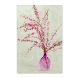 Cora Niele 'Pink Broom In Glass' Canvas Art