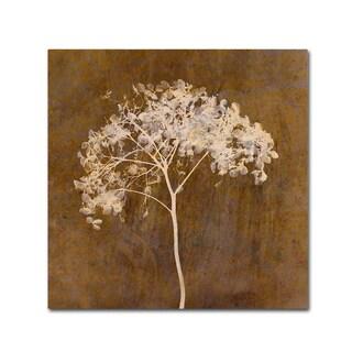 Cora Niele 'Hortensia Silhouette Bronze' Canvas Art