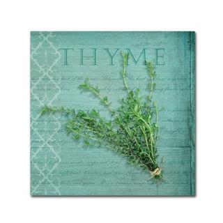 Cora Niele 'Classic Herbs Thyme' Canvas Art