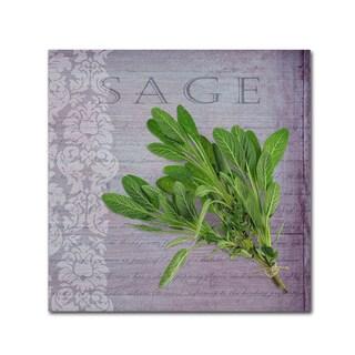 Cora Niele 'Classic Herbs Sage' Canvas Art
