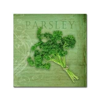 Cora Niele 'Classic Herbs Parsley' Canvas Art