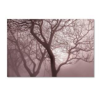 Cora Niele 'Hazy Dawn With Tree Tree Silhouettes' Canvas Art