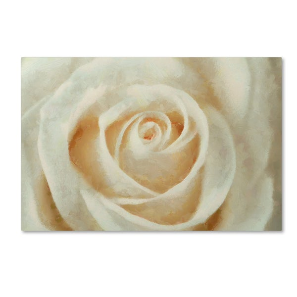 Cora Niele 'White Rose' Canvas Art