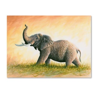 Chuck Black 'Majesty' Canvas Art