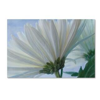 Bob Rouse 'Fuji White 2' Canvas Art