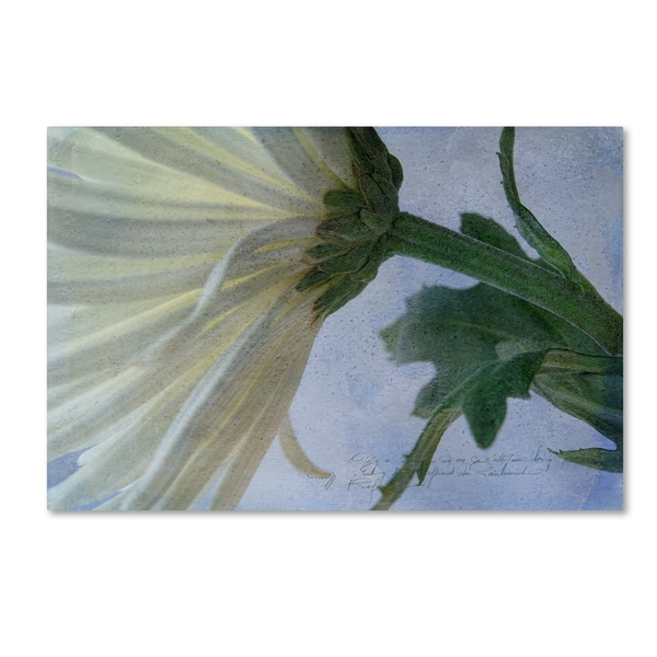 Bob Rouse 'Fuji Green' Canvas Art