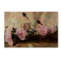 Bob Rouse 'Passion Pink 2' Canvas Art
