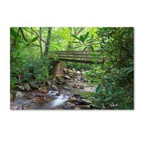 Bob Rouse 'Alum Cave Trail Bridge' Canvas Art