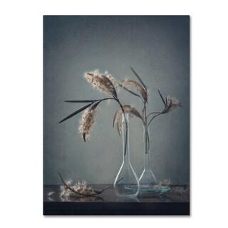 Dimitar Lazarov 'Ii' Canvas Art